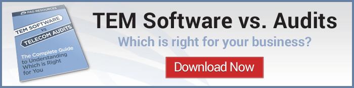tem software vs. and audit