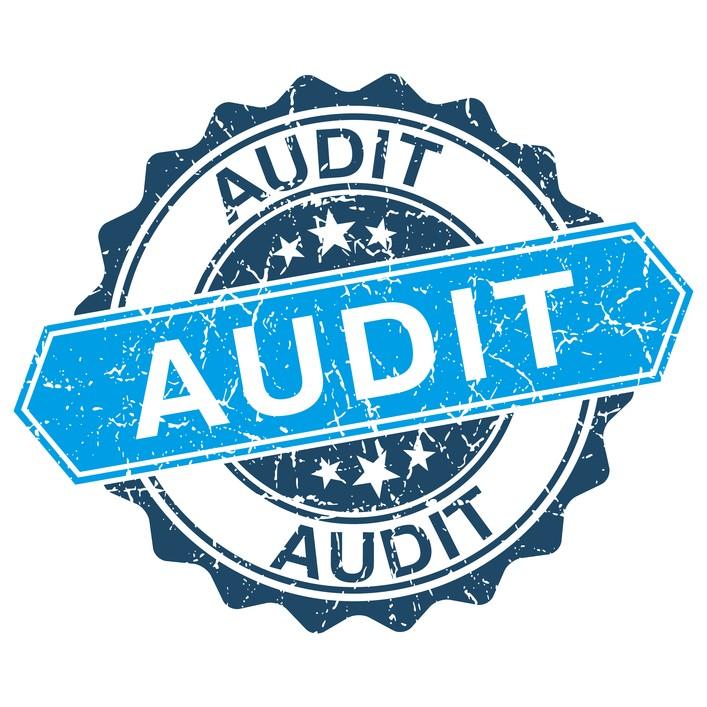 Telecom Audit for My Company